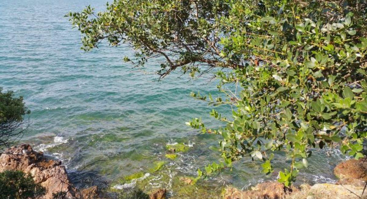 adalar-prince-islands-istanbul-burgazada-kinaliada-heybeliada-buyukada-sea